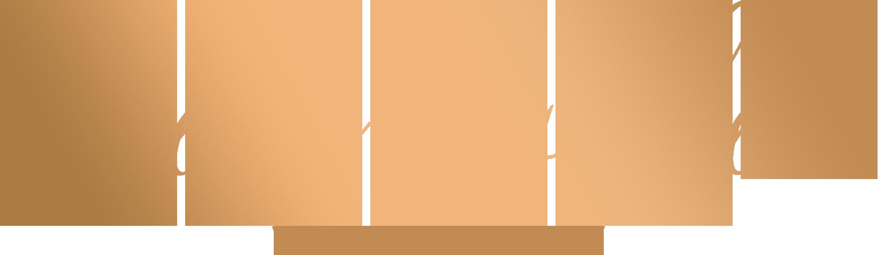 logo studio nowe